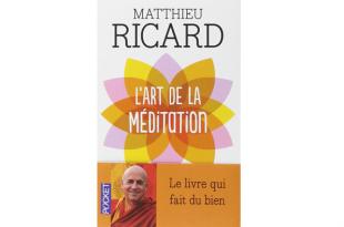 l'art de la meditation matthieu ricard
